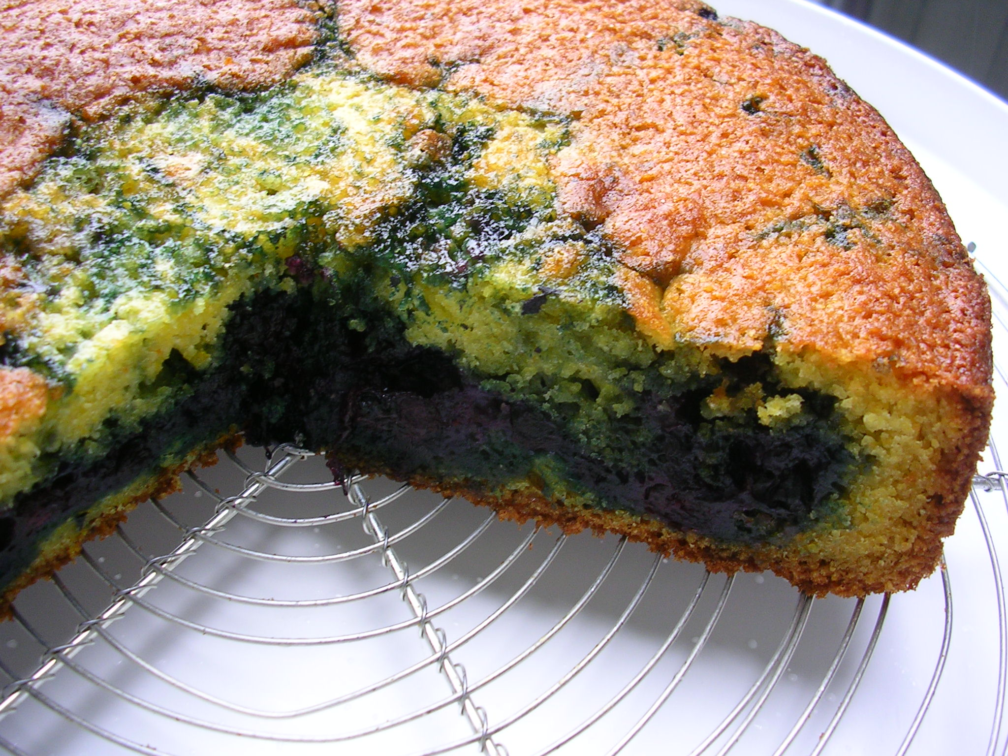 Blueberry Corn Coffee Cake 2