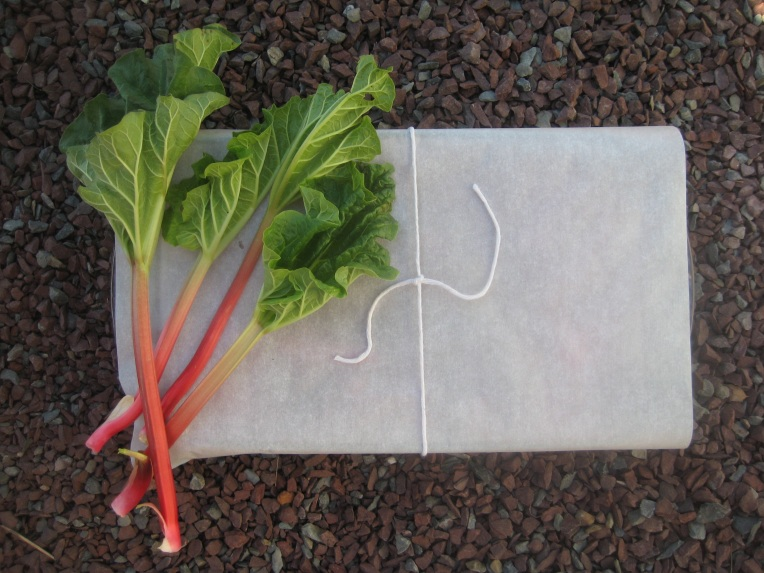 Rhubarb wrap1
